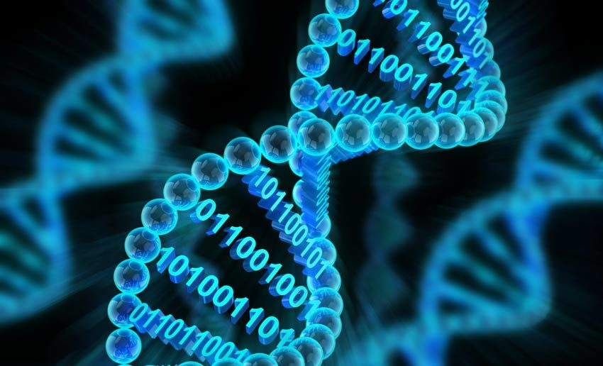 Data storage in DNA